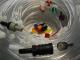 Wasserbefüllung und Elektrolytumwälzung